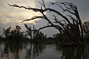 Osvay Ecotourism Site