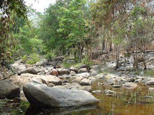 Prek Thnout Ecotourism