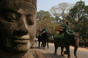 Angkor Elephant Ride