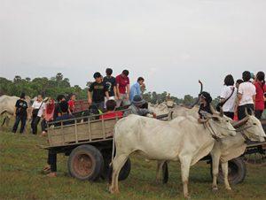 Khmer Family Homestay