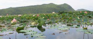 Kamping Puoy Reservoir